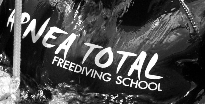 Free diving, Freediving Courses, Koh Tao